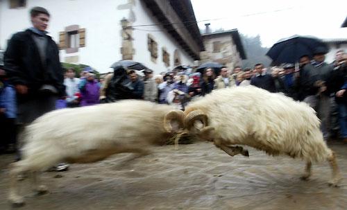 http://www.20minutos.es/data/img/2005/02/04/17427.jpg