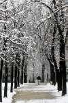 Mejora la situación de las carreteras tras temporal de nieve