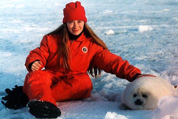 Focas matanza galeria - Rebecca y foca. Un grupo de veterinarios que acudió a Canadá, invitado por el Fondo Internacional para el Bienestar Animal, durante el 2001 fue a la cacería e indicó que el 40% de los animales habían sido despellejados estando vivos. En la imagen, Rebecca Aldworth con una de las crías de foca.