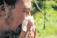 17 especialistas para los 250.000 sevillanos que sufren alergia
