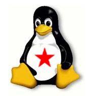 Linux dentro