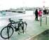 Bicicletas sin 'parking'