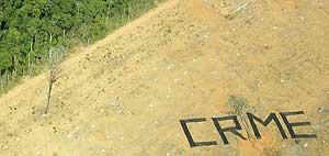 """Activistas de Greenpeace escriben """"Crimen"""" con un árbol talado en un área deforestada de la selva amazónica (Archivo Reuters)"""