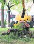 La tala de varios árboles enfrenta a los vecinos del barrio Las Naciones