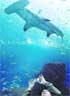 El mayor acuario del mundo