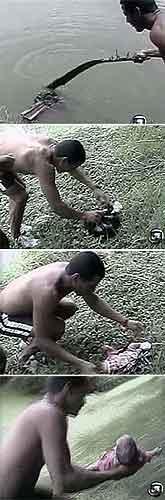 Secuencia bebé brasil