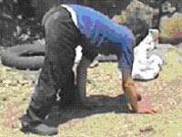 Cuadrúpedo humano de Turquía (FOTO: Uner Tan)