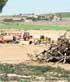 Ecologistas denuncian otra gravera ilegal