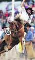 Los mejores jinetes, en el rodeo charrúa