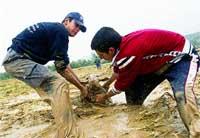 Diluvio en el oriente andaluz