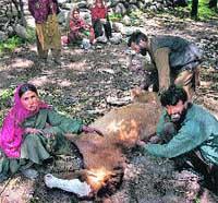 Víctimas del fuego cruzado en Cachemira