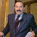 El diputado del PP, Vicente Martínez Pujalte, interviene hoy en uno de los salones del Congreso (Efe).