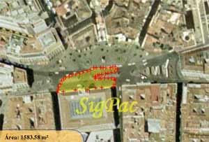 Área ocupada por la sentada por una vivienda digna, en Madrid (SigPac-<A title=