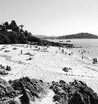 Una playa para los amantes de las olas más agresivas