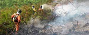 Incendio Asturias