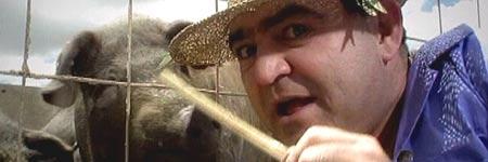 Fotograma del nuevo vídeo del Koala.