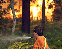 Un hombre trabaja en las labores de extinción del incendio que afecta a la localidad pontevedresa de Arcade.