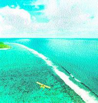Los fondos marinos más bellos, a un paso