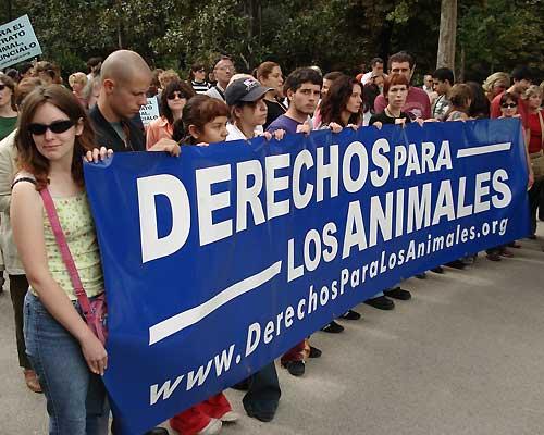 En torno al millar de personas reclamaron derechos para los animales. (Luis Repiso)