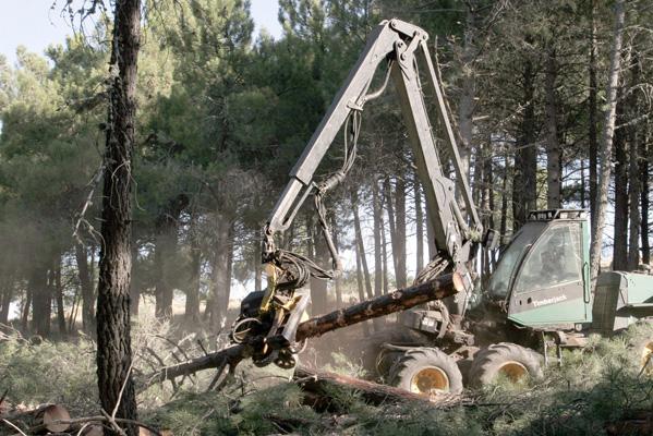Un operario trabaja con una de las máquinas utilizadas en la tala de árboles para construir la Ciudad del Golf, en las Navas del Marqués.(Jonathan Martin / EFE )