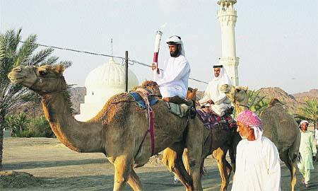 La llama viaja en camello