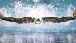 Una mariposa brasileña, a la caza de Phelps