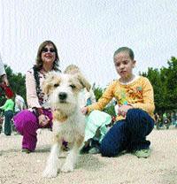 La protectora de Vigo no  da perros para regalar