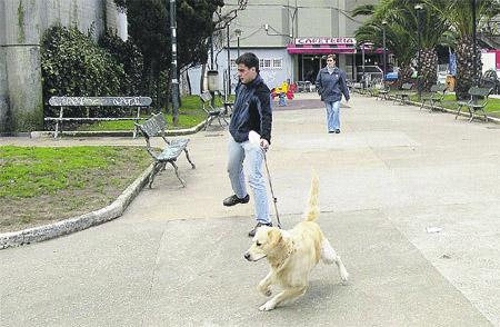 El 70% de los coruñeses no recoge la caca de su perro