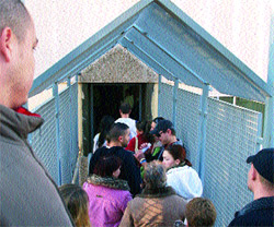 Extranjer a deniega el 95 de permisos a inmigrantes for Oficina extranjeria alicante