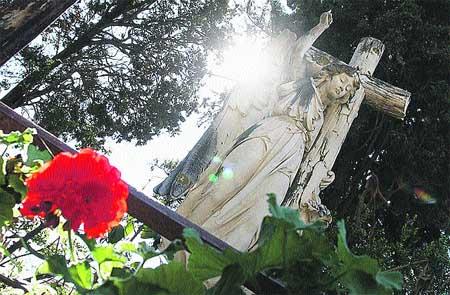 historias del jardín de los muertos