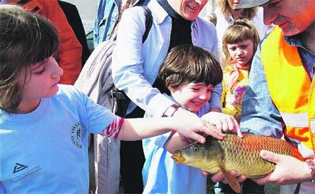 Pescar el pez, acariciarlo, y devolverlo a la ría