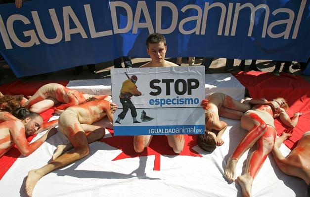 Manifestación en defensa de las focas