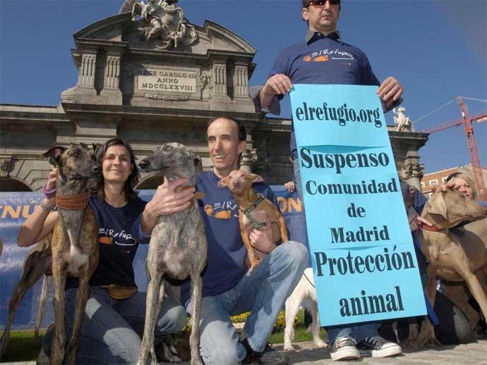 Suspenso a la Comunidad de Madrid en protección animal