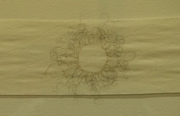Un cuadro hecho con vello p bico decora un centro - Maquina para rasurar vello pubico ...