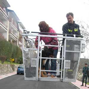 Durante el rescate