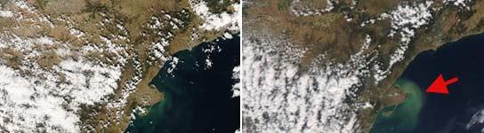 La imagen de la izquierda es del 24 de marzo y la de la derecha, del 8 de abril. (MODIS Rapid Response Project)