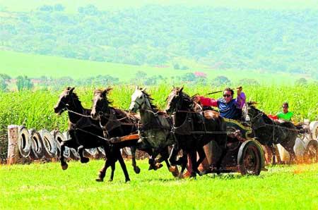 Carreras de cuadrigas romanas en Brasil