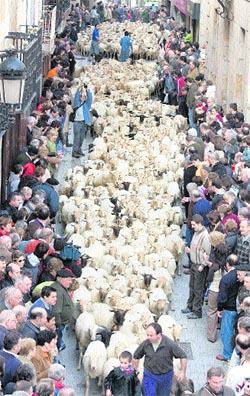 La trashumancia cruza Euskadi