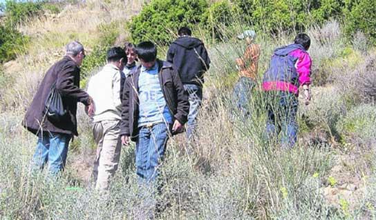 Escolares ayudan a recuperar el bosque