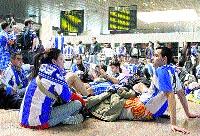 Más de 400 periquitos se quedan enjaulados en el aeropuerto de El Prat