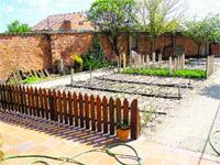 lo mÁs natural, plantar un huerto