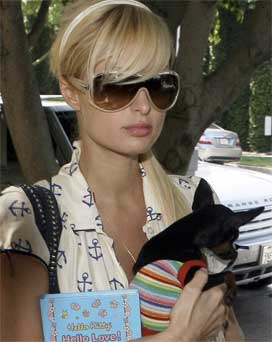 Paris Hilton y su chihuahua