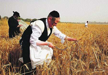 Pan sin levadura para judíos