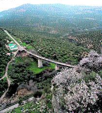 Una ruta entre pueblos y olivos