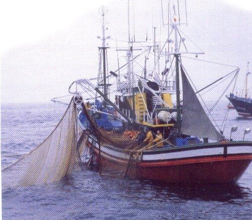 Embarcación de palangre