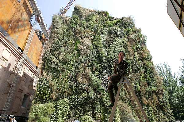 130707 Jardín vertical