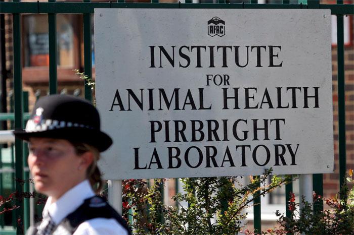 Instituto de Salud Animal de Pirbright
