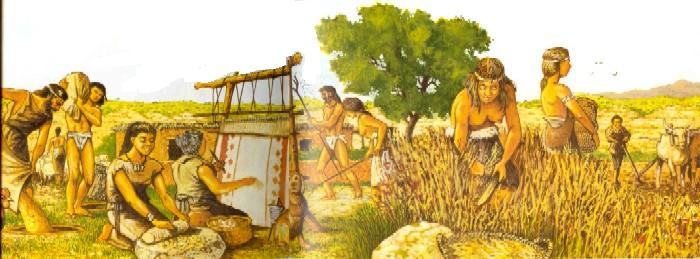 El hombre del neolítico ya mascaba chicle