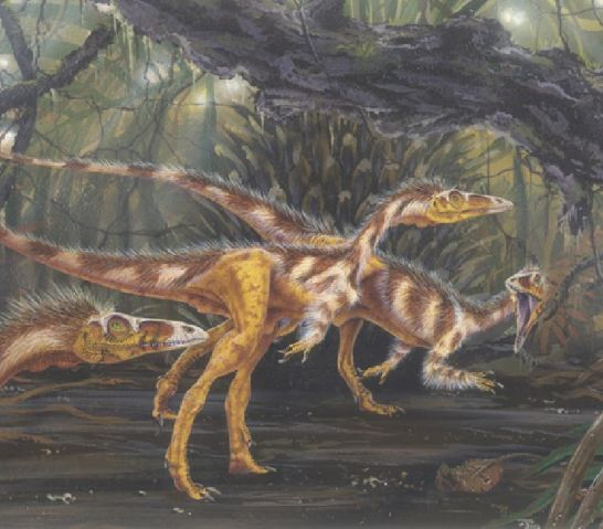 El 'compsognathus' dejaría atrás a un avestruz moderno