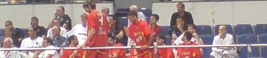 Los jugadores de España en la grada